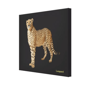 Animal image for Wrapped canvas