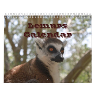 Animal Lemur Cute Nature Zoo Custom Destiny Calendar