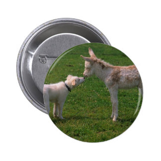 Animal lover shank, young donkey with dog, pinback buttons