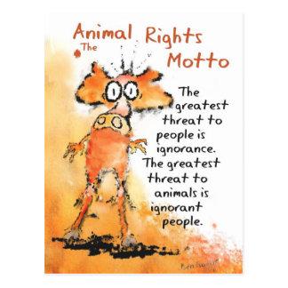 Animal Motto Postcard