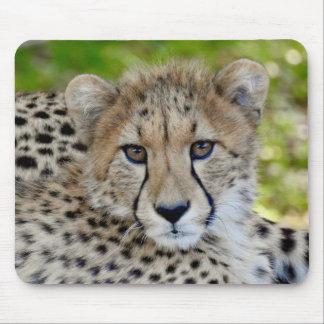 Animal Mousepad Series - Baby Cheetah