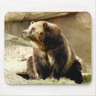 Animal Mousepad Series - Grizzly Bear