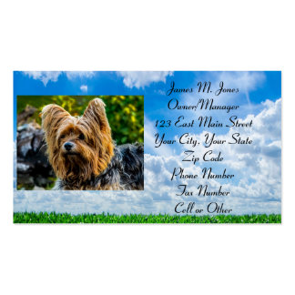Animal Pet Sitting Cat Dog Business Office Care Business Cards