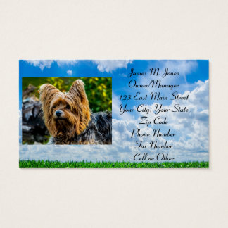 Animal Pet Sitting Cat Dog Business Office Care Business Card