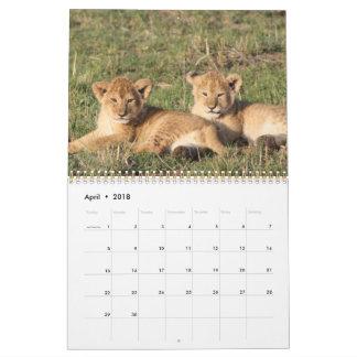Animal Pets Wildlife Love Destiny Destiny's Wall Calendars