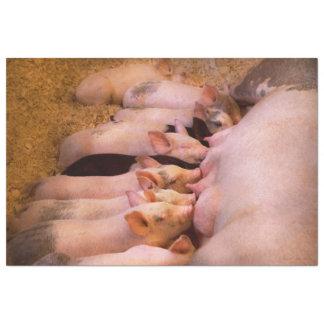 Animal - Pig - Comfort food Tissue Paper
