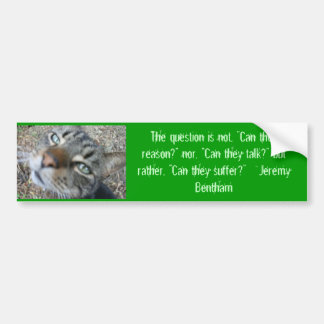 Animal quotes - from Jeremy Bentham bumper sticker