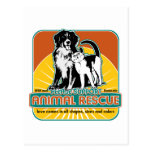 Animal Rescue Dog and Cat Post Cards