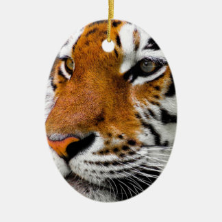 Animal Tiger Cat Amurtiger Predator Dangerous Ceramic Ornament