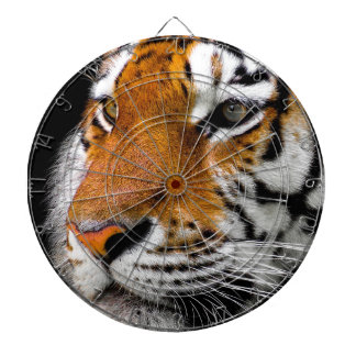 Animal Tiger Cat Amurtiger Predator Dangerous Dartboard