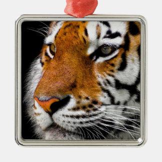 Animal Tiger Cat Amurtiger Predator Dangerous Metal Ornament