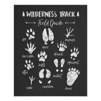 Animal Track nursery print Woodland Nursery
