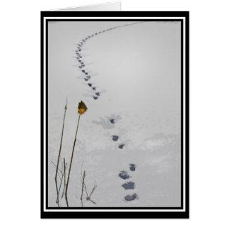 Animal Tracks Note Card