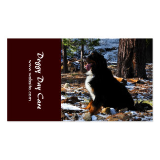 Animal Training, Breeding, Kennel and Veterinary Business Card