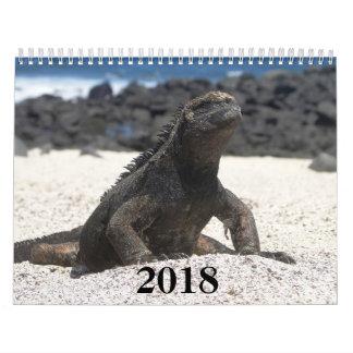 animals and birds of Galapagos Calendar
