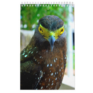 Animals and Pets Calendar