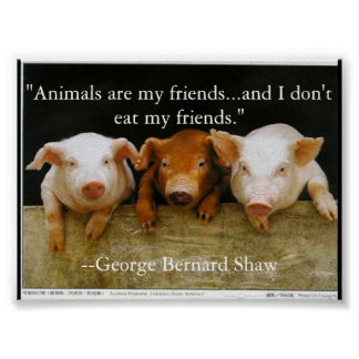 animals are my friends poster