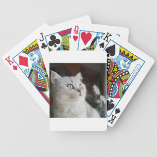 Animals Cat Feline Bicycle Playing Cards