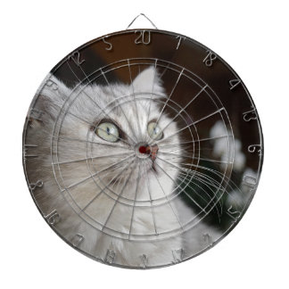 Animals Cat Feline Dartboard