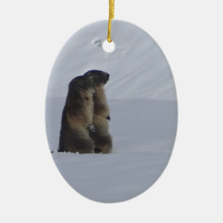 animals marmots savage ceramic oval ornament