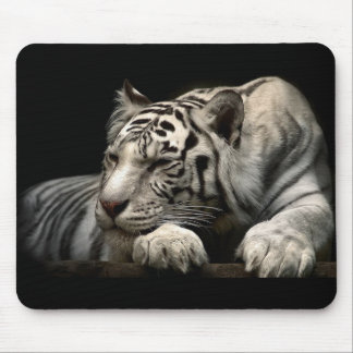 Animals Mouse Pad