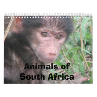Animals of South Africa Calendars
