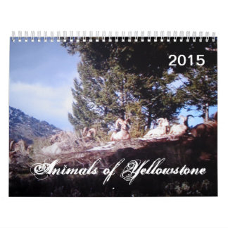 Animals of Yellowstone Custom Printed Calendar