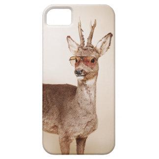 Animaux frais dans des lunettes de soleil étuis iPhone 5