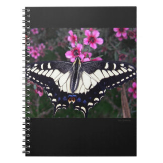 Anise Swallowtail Spiral Notebook