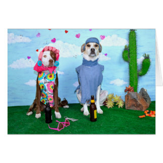 Aniversary card, humorous,  dogs in clothes card