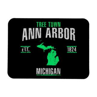 Ann Arbor Magnet