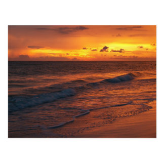 Anna Maria Island, FL Postcard