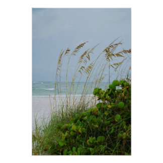 Anna Maria Island, Florida, beach scene Poster