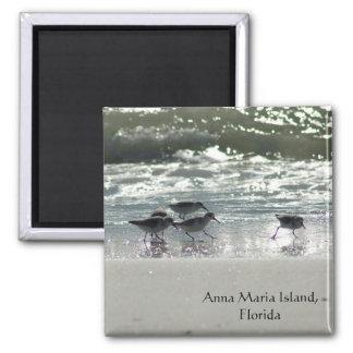 Anna Maria Island, Florida Square Magnet