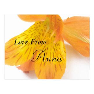 Anna Postcard