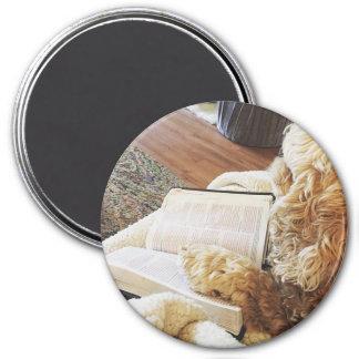 annabelle 3 inch round magnet