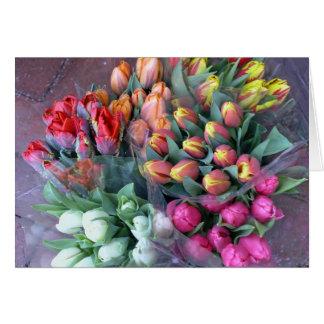 Annapolis Tulips Card