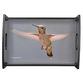 Anna's Hummingbird Hovers in Place Serving Tray