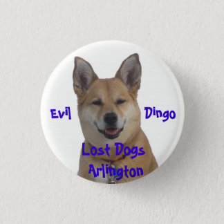 annie1234, Lost Dogs Arlington, Evil           ... 1 Inch Round Button