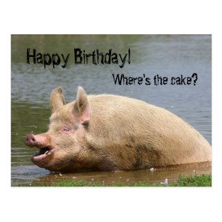 Anniversaire avide de porc carte postale