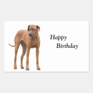Anniversaire de photo de chien de Rhodesian Ridgeb Stickers En Rectangle