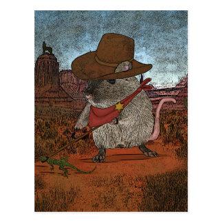 Anniversaire drôle de cowboy cartes postales