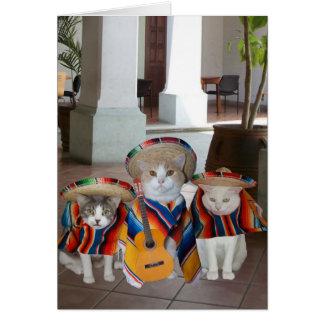Anniversaire espagnol de chats drôles pour carte de vœux