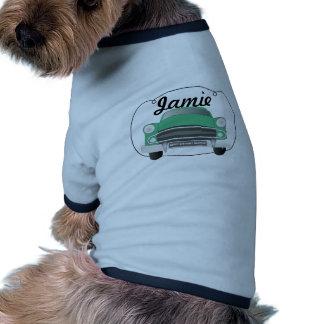 Anniversaire le rétro du garçon moyen vert de manteaux pour chien