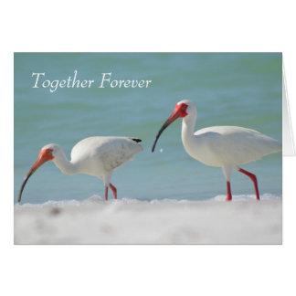 Anniversary Card, Florida Style Card