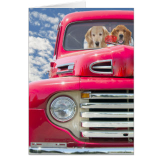 Anniversary Dogs in Truck Greeting Card