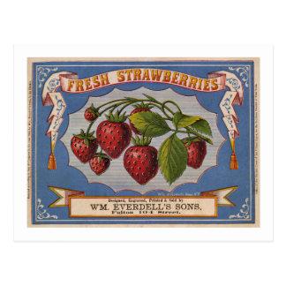 Annonce vintage pour les fraises fraîches circa carte postale