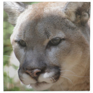 Annoyed Mountain Lion Napkin