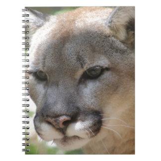 Annoyed Mountain Lion Notebooks
