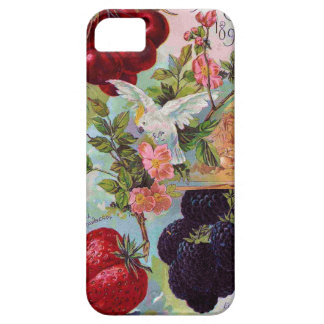Annual Fruit Catalog 1896 Case For iPhone 5/5S